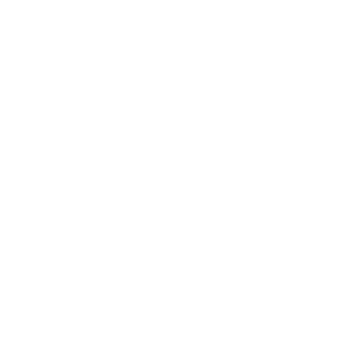 bolt and nut2